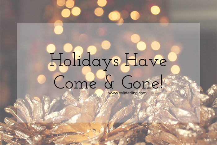 Holidays Have Come and Gone!