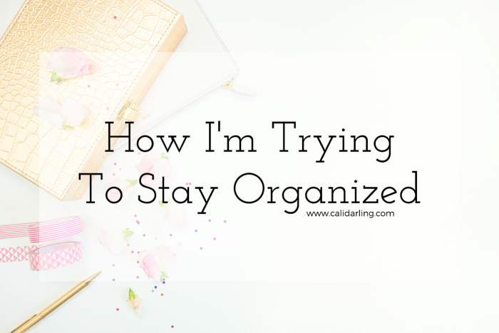 how-im-trying-to-stay-organized@2x