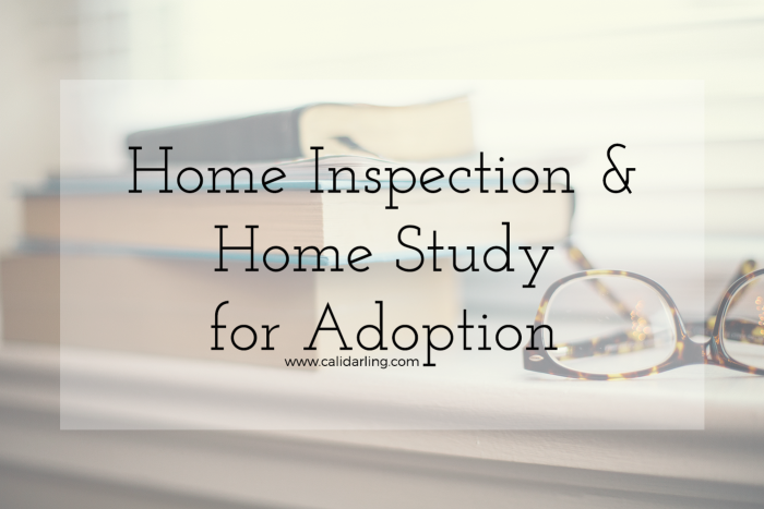 Home-Inspection-Home-Study-for-Adoption@2x